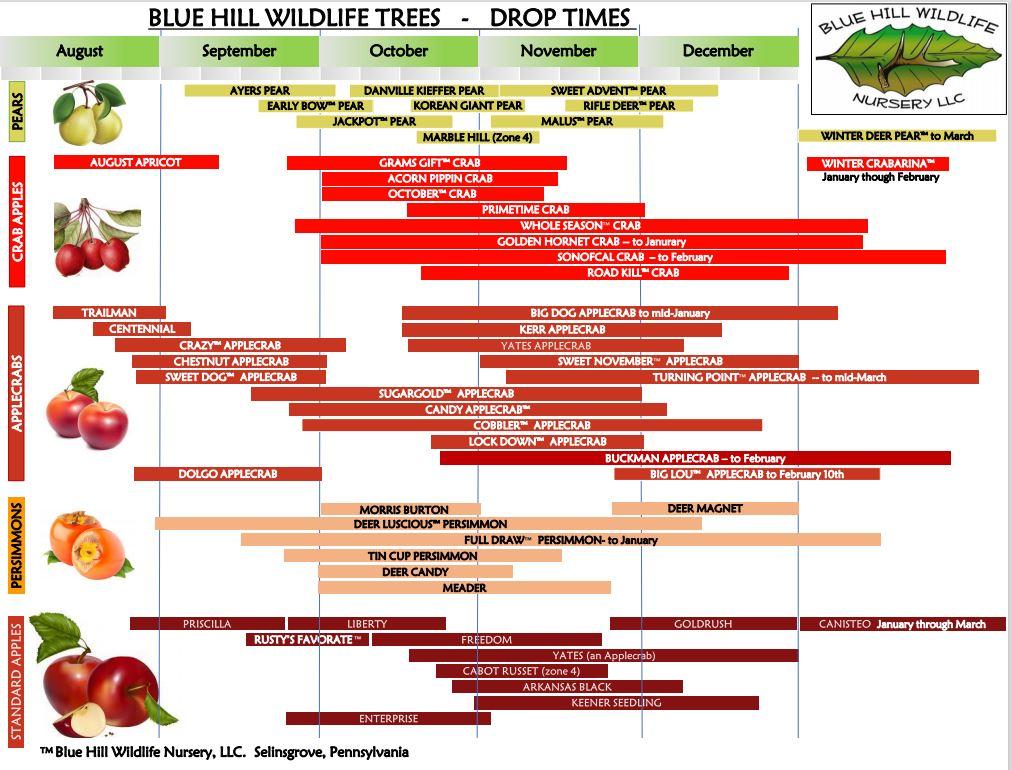 bluehillwildlifenursery.com